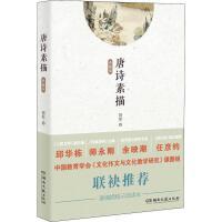 唐诗素描(典藏版) 湖南文艺出版社