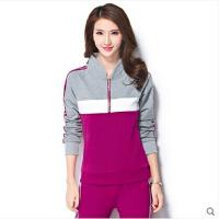 运动服时尚卫衣休闲套装女 新品休闲运动套装女款长袖立领