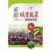 家庭观赏蔬菜种植与养护(POD)