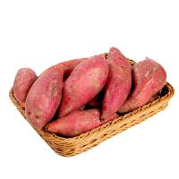 【陕西特产】板栗红薯 4.5kg