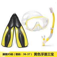 浮潜三宝套装呼吸管面镜潜水镜浮浅装备全干式