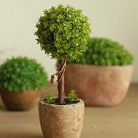 仿真花套装绿色环保植物仿真盆栽办公桌摆件 万年青小盆栽花球