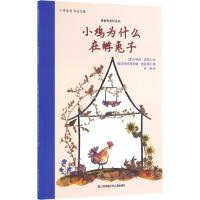 小鸡为什么在孵兔子 江苏少年儿童出版社