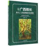 正版图书 广西雅长野生兰科植物彩色图集(精) 出版社:中国林业出版社 9787503888687 中国林业出版社