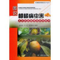 图说柑橘病虫害及农药减施增效防控技术(社级市场书)