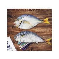 日照鑫 创意仿生鱼笔袋鲜活海鱼记个性鲫鱼学生文具袋咸鱼笔包