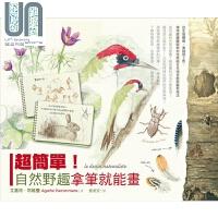 超简单!自然野趣拿笔就能画!从生态观察、素描到上色 港台原版 艾嘉特耶维曼 野人文化