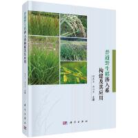 普通野生稻渗入系构建及其应用
