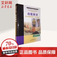 功能解剖:肌与骨骼的解剖,功能及触诊 天津科技翻译出版公司