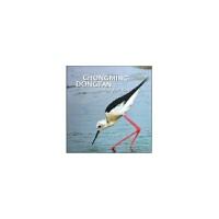 崇明东滩鸟类保护区(英文版) 上海崇明东滩鸟类*自然保护区