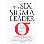 The Six Sigma Leader: How Top Executives