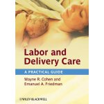 Labor and Delivery Care: A Practical Guide [ISBN: 978-04706