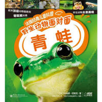 正版书籍 青蛙-法国经典儿童科普野生动物面对面 Michel Cuisin(米凯・卡新)Corinne Chesne(