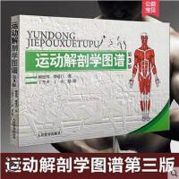运动解剖学图谱 第3版 运动解剖图谱书解剖学教材 人体肌肉图解书籍 运动学解刨学图谱解刨书 肌肉塑造教程书运动生理学