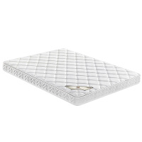 天然椰棕床垫棕垫硬棕榈垫偏硬1.8m1.5米床垫席梦思折叠床垫 1