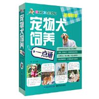 【新书店正版】宠物犬饲养一点通她品福建科技出版社9787533544362