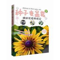 全新正品 种子变盆栽――缤纷花草养成记 自在 9787517022299 水利水电出版社