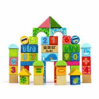 木玩世家全家欢50粒海洋积木木制积木儿童益智玩具QJH-1101
