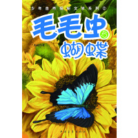 毛毛虫与蝴蝶
