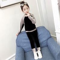童装女童卫衣套装秋款2018新款韩版时尚儿童春装女孩金丝绒两件套