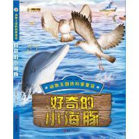 好奇的小海豚