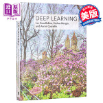 【中商原版】深度学习 英文原版 Deep Learning Jayme Adelson-Goldstein 计算机科学