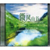 班得瑞乐团9:微风山谷(CD)