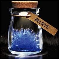 20191213021607765红兔子 绿态灯流星许愿晶灵 许愿水晶 许愿瓶 水晶夜光许愿精灵创意玻璃瓶子幸运许愿瓶星