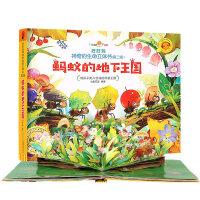 好好玩神奇的生命立体书(第二辑)・蚂蚁的地下王国