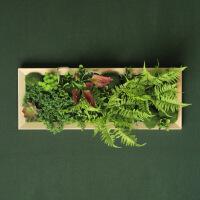 墙面装饰绿植多肉植物壁挂壁花仿真挂壁装饰花工业风装饰墙壁植物 A--80*30cm 热带植物