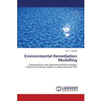 Environmental Remediation Modelling: Computational and Expe