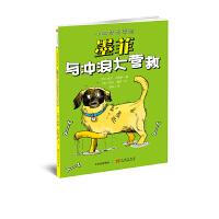 小狗梦想学院:墨菲与冲浪大营救
