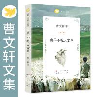 曹文轩文集-山羊不吃天堂草
