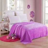 冬季云貂绒毛毯床单毯子双人单人宿舍毯子儿童学生加厚毯子