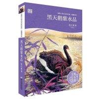 动物小说大王沈石溪・品藏书系:黑天鹅紫水晶