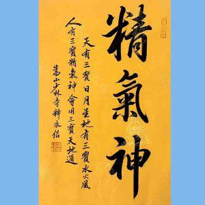 第九十十一十二届全国人大代表,少林寺方丈释永信(精气神)