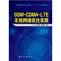 GSM-CDMA-LTE无线网络优化实践(丁远)