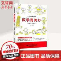 数学真美妙小学3~4年级 刘勇 编著