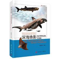 深海鱼影海洋脊椎动物的奥秘