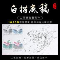 紫芳斋工笔画白描底稿熟宣纸初学者花鸟勾线上色毛笔画工笔画教程