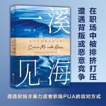 一溪见海.I(国内教科书级别的女性职场小说。被排挤打压、遭遇背叛或恶意竞争、职场冷暴力或职场PUA的应对方式,强共鸣、有启发。)