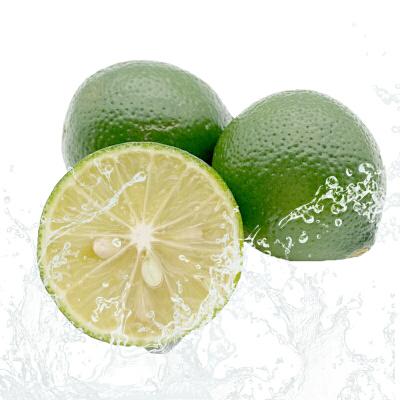 【包邮】乐食汇 海南青柠檬3斤装单果30-50g新鲜包邮独立包装
