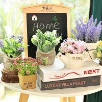 创意仿真植物装饰绿植室内盆栽客厅摆件假花卉多肉小盆景摆设家装软饰花艺