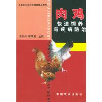 肉鸡快速饲养与疾病防治