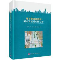 地下管线监测与城市发展适应性分析