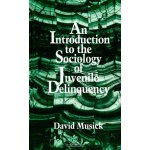An Introduction to the Sociology of Juvenile Delinquency (S