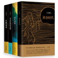 王小波精选小说套装(共4册)