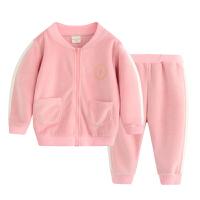 金丝绒套装儿童2018韩版时尚宝宝两件套潮春季新款男女童运动套装
