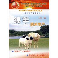 绵羊肥羔生产