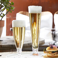 【Bormioli Rocco】Palladio 帕拉帝玻璃啤酒杯 385ml 2只装